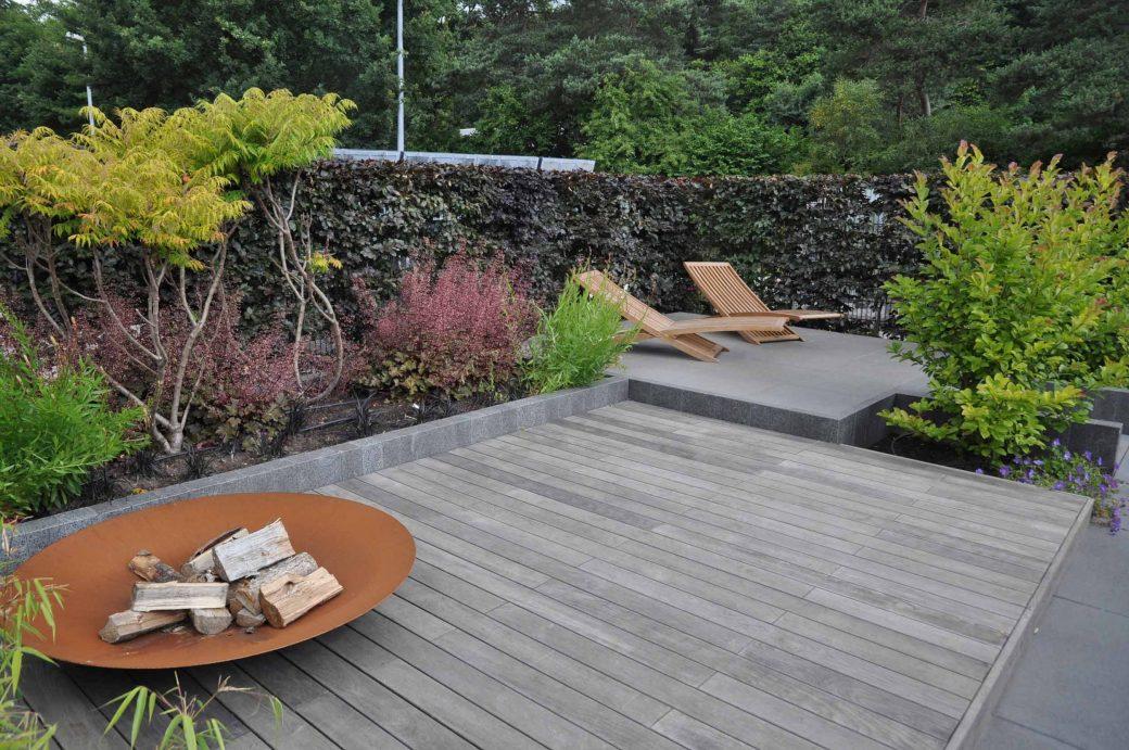 Mustergarten mit zwei Liegestühlen und Phellodendron amurense