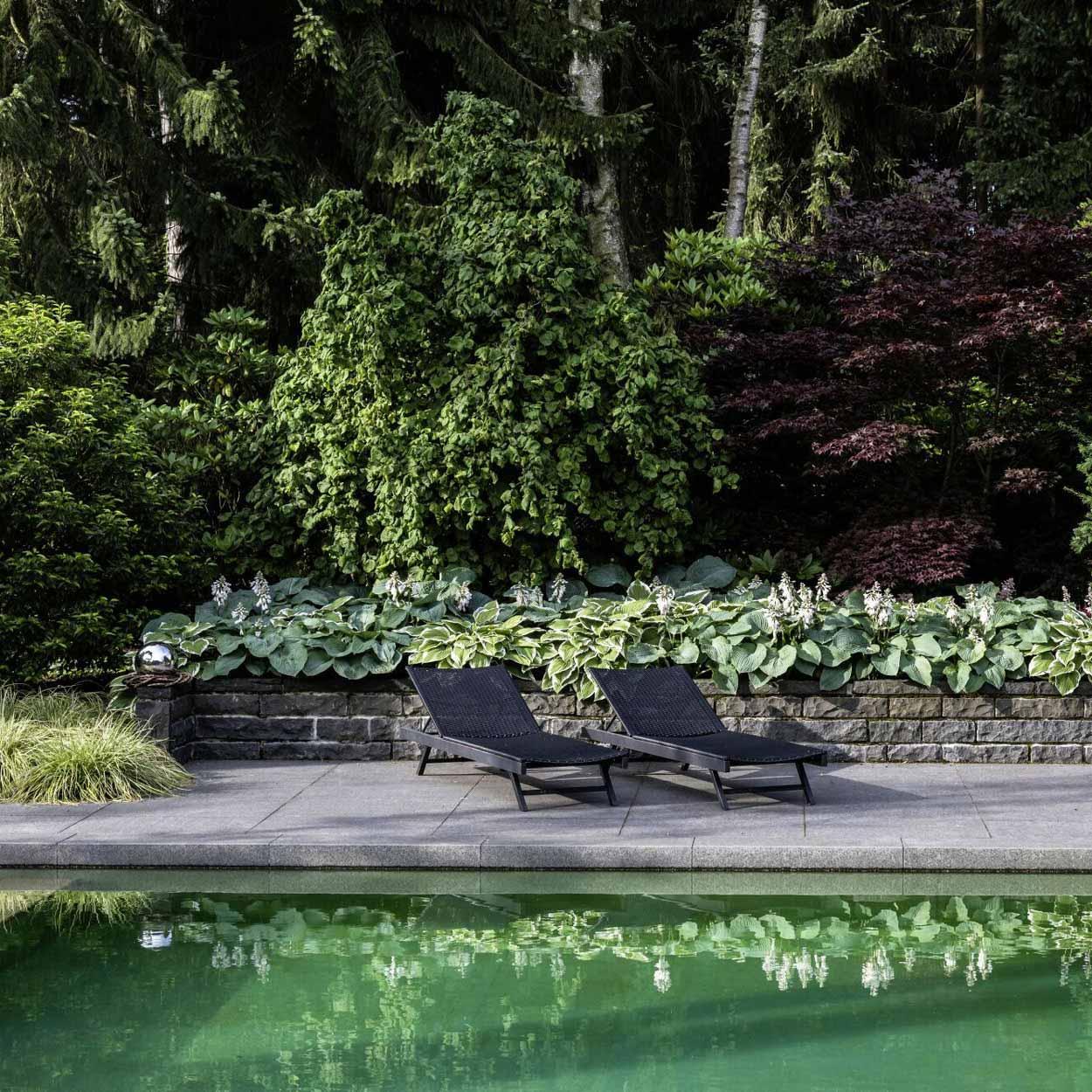 Privatpool mit Crataegus-Bäumen