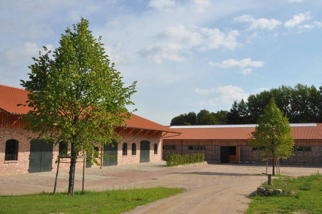 Tilia europaea 'Palllida' vor Hofgebäuden in Niedersachsen