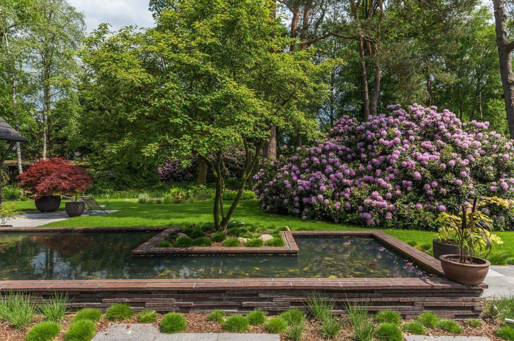 Wasserbecken mit Solitär-Baum und Hortensien